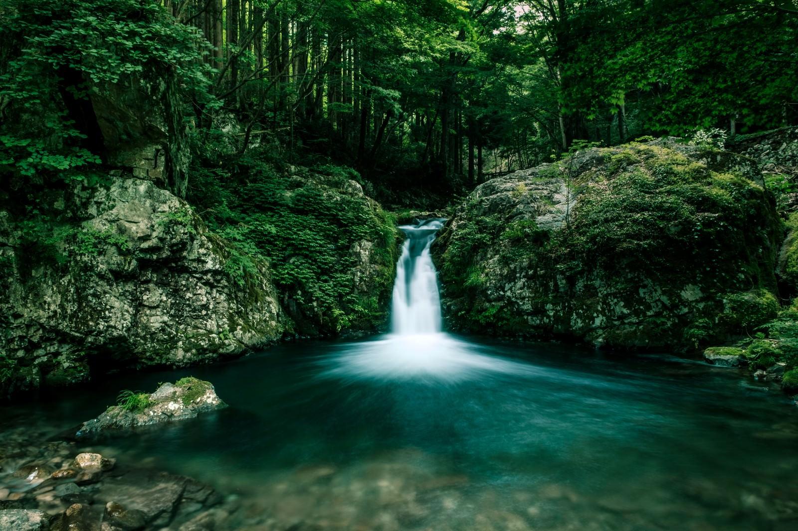 「小さな滝がある渓谷」の写真