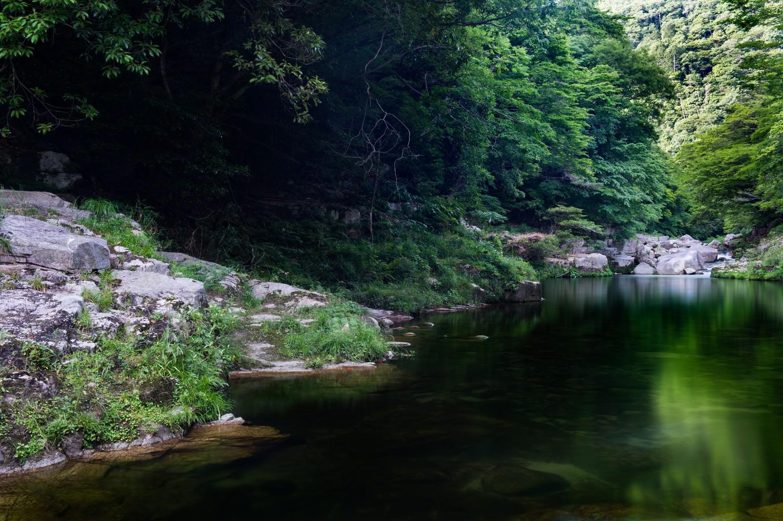 「奥津渓の穏やかな流れ」の写真