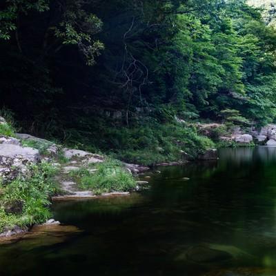 奥津渓の穏やかな流れの写真