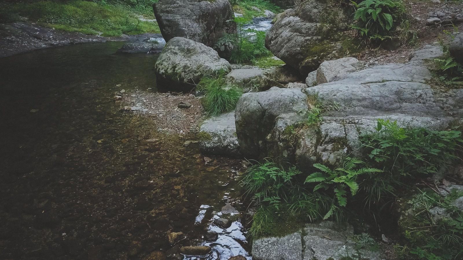 「河辺(白賀渓谷)」の写真