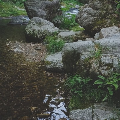 「河辺(白賀渓谷)」の写真素材
