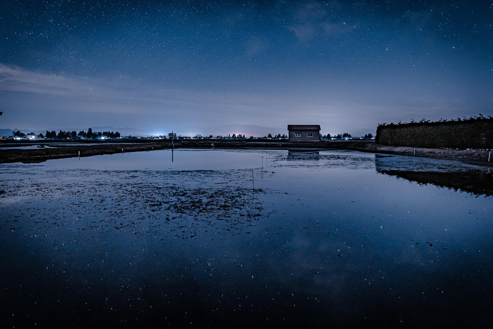 「セリ畑に映る星空」の写真