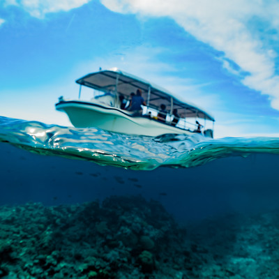 水面から見る観光ボートの写真