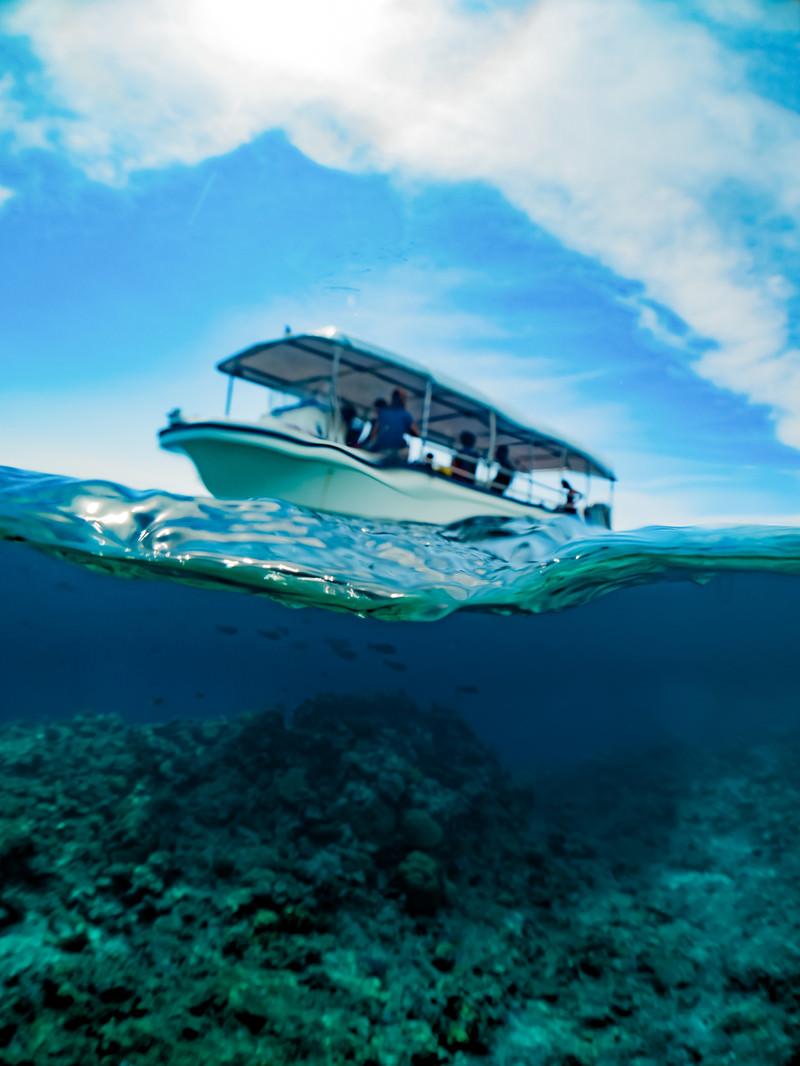 「水面から見る観光ボート」の写真
