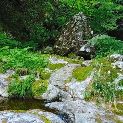 「白賀渓谷の岩場」の写真素材