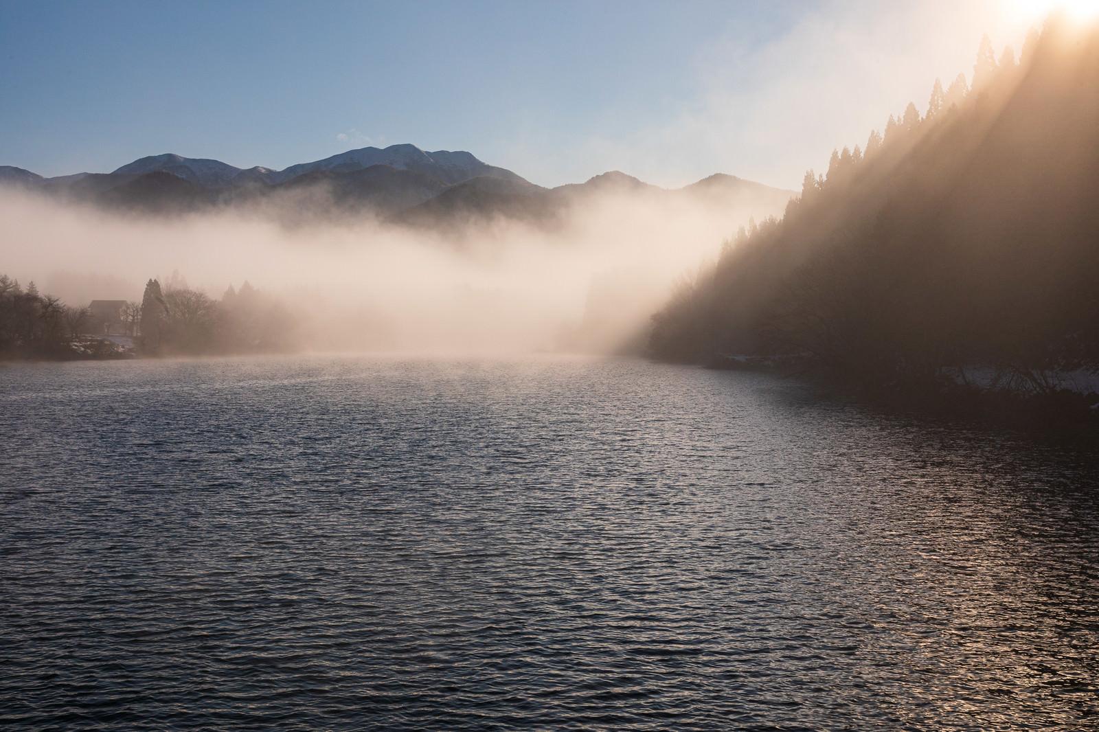 「朝靄のため池」の写真