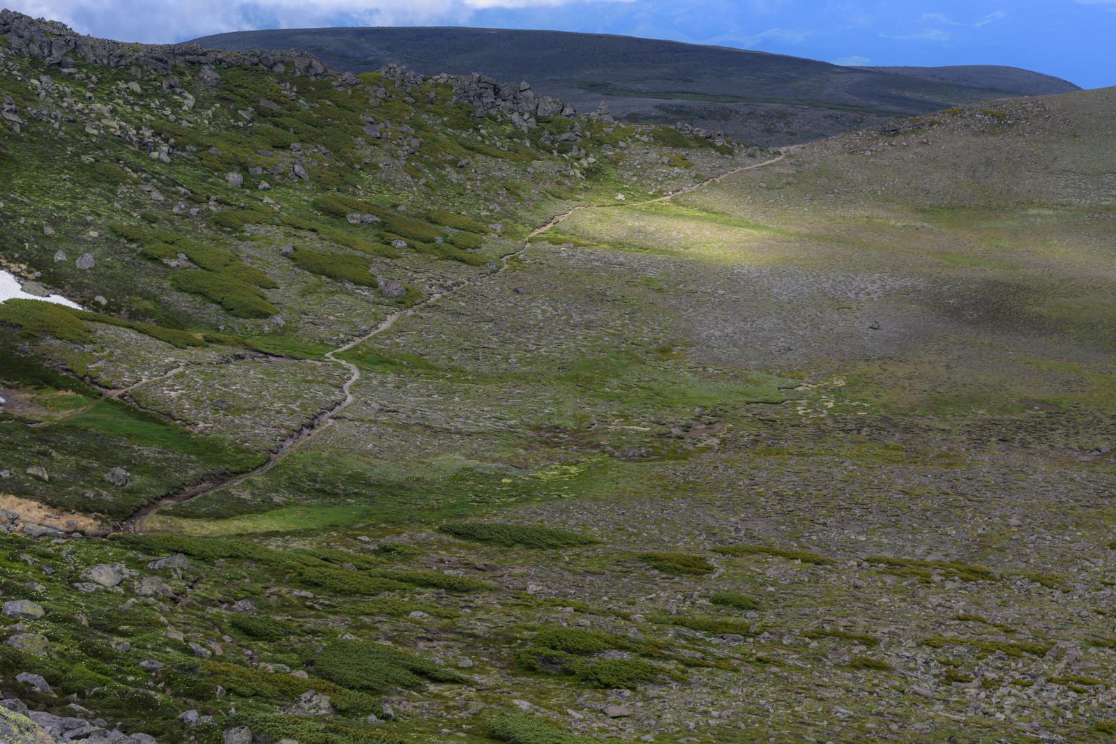 「光差す白雲岳中腹」の写真