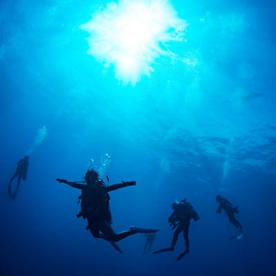 浮遊するダイバーの写真