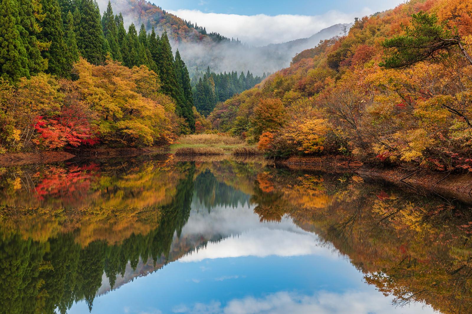 「紅葉が映り込むため池」の写真