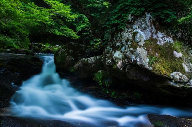 新緑と岩の間を流れる美しい清流(鏡野町)の写真