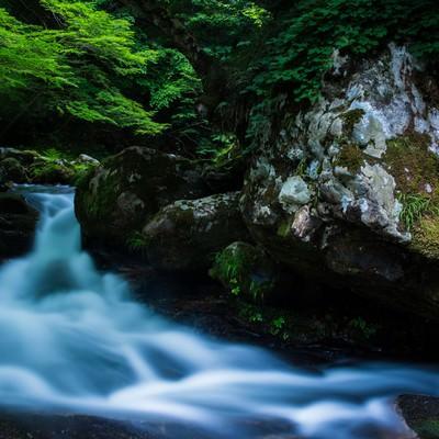 「新緑と岩の間を流れる美しい清流(鏡野町)」の写真素材