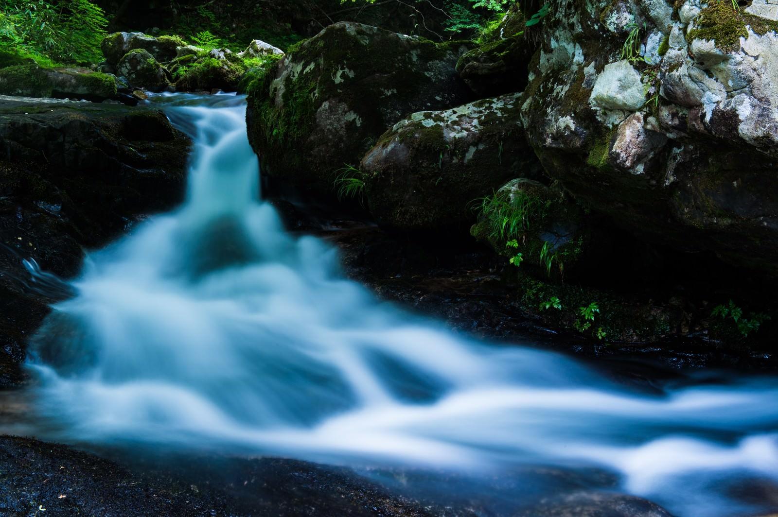 「岩間を流れる水源(白賀渓谷)」の写真