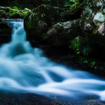 岩間を流れる水源(白賀渓谷)の写真