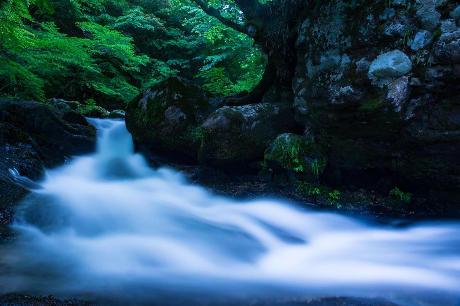 「白賀渓谷の水流(岡山県鏡野町)」の写真