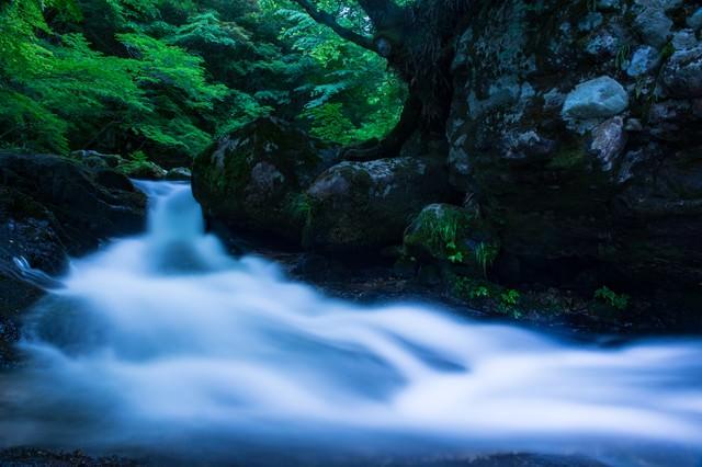 白賀渓谷の水流(岡山県鏡野町)の写真