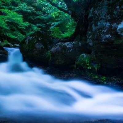 「白賀渓谷の水流(岡山県鏡野町)」の写真素材