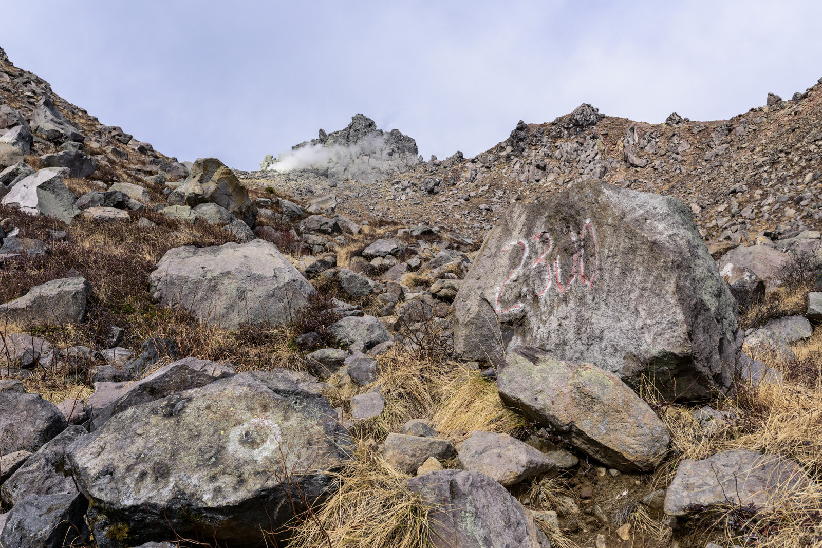 「標高2,300m地点(焼岳)」の写真
