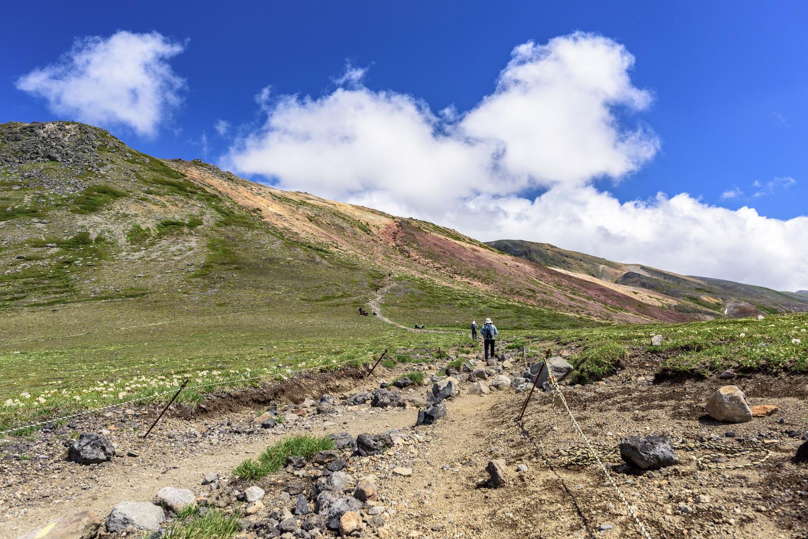 「大雪山の登山道を歩く登山者」の写真