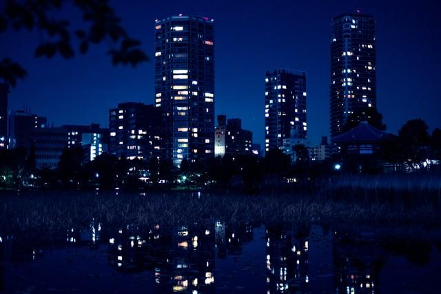 夜が更けた不忍池の様子の写真