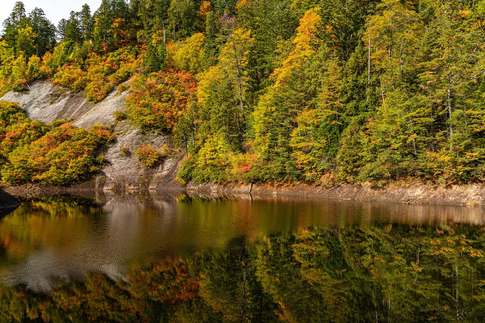 「紅葉した木々と秋の太平湖(秋田県北秋田市)」の写真