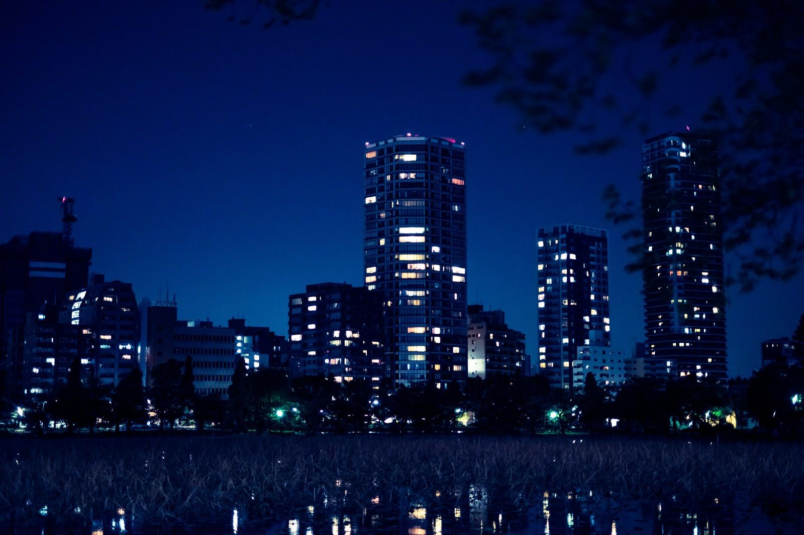 「高層マンションと不忍池の夜高層マンションと不忍池の夜」のフリー写真素材を拡大