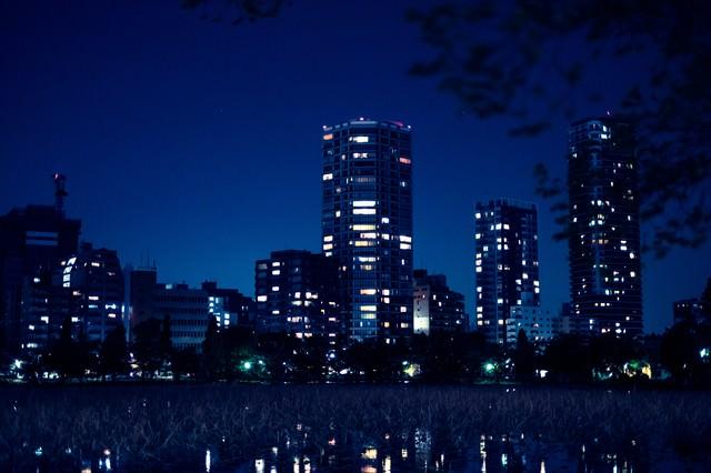 高層マンションと不忍池の夜の写真