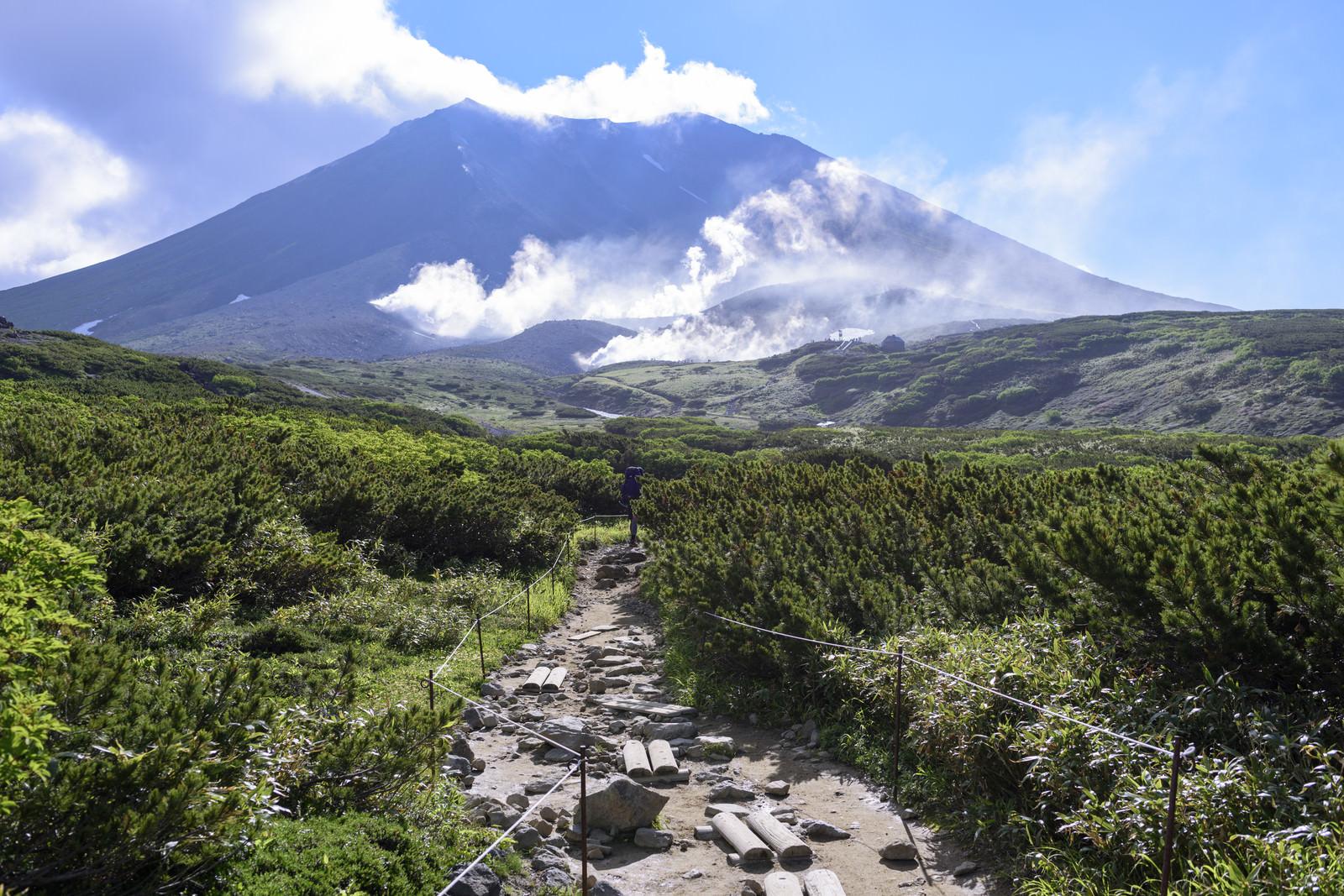 「姿見から見る旭岳(あさひだけ)」の写真