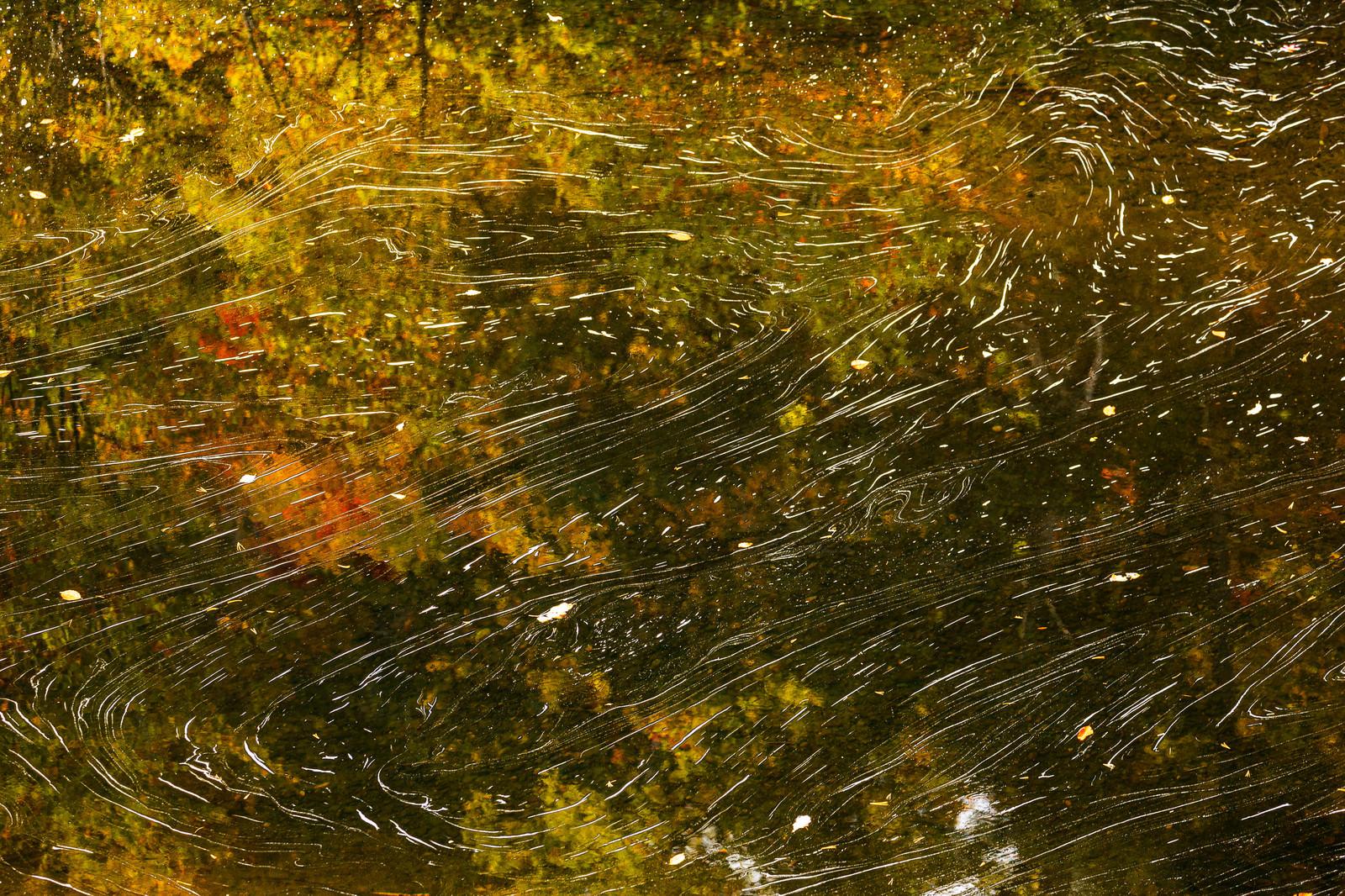 「水面に映る紅葉と泡の流れ」の写真