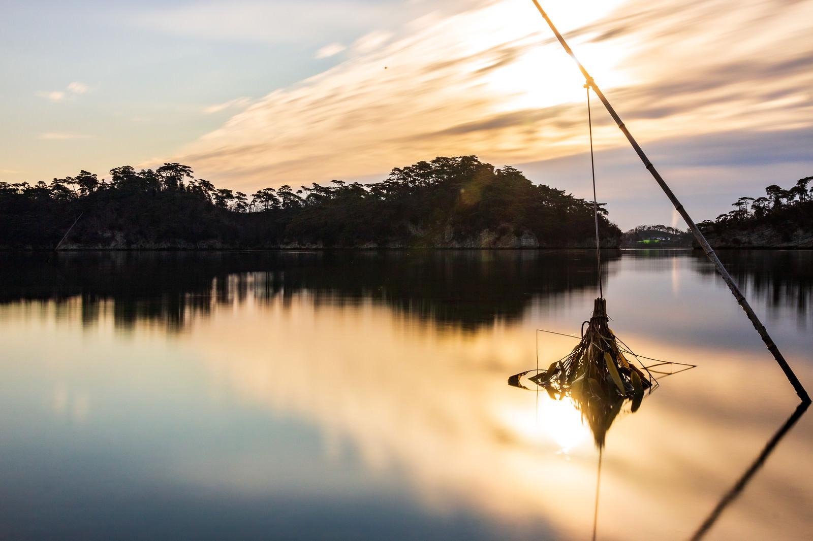 「穏やかな松島の海と竹竿(宮城県)」の写真