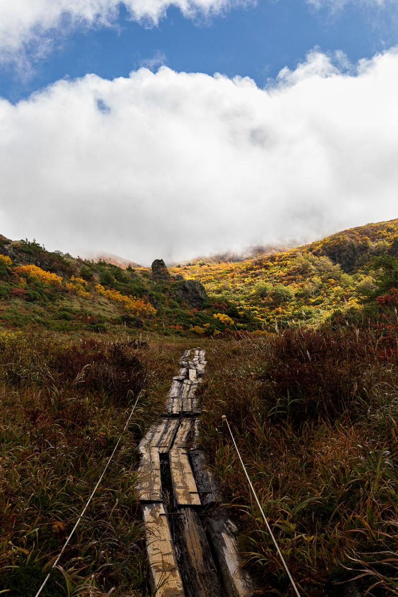 「色付き始めた山へと続く朽ちた木道」の写真