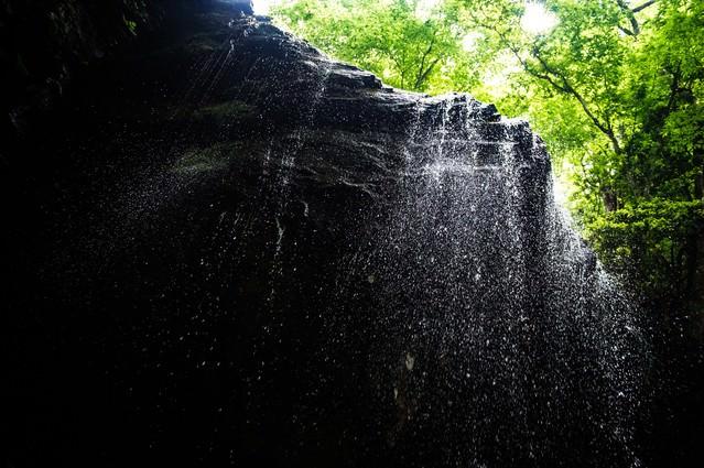 しぶきが眩しい新緑期の岩井滝の写真