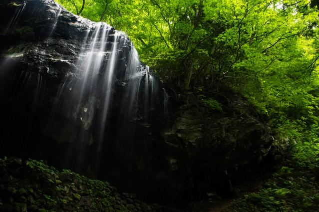 新緑期の岩井滝(岡山県鏡野町)の写真