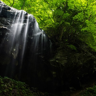 「新緑期の岩井滝(岡山県鏡野町)」の写真素材