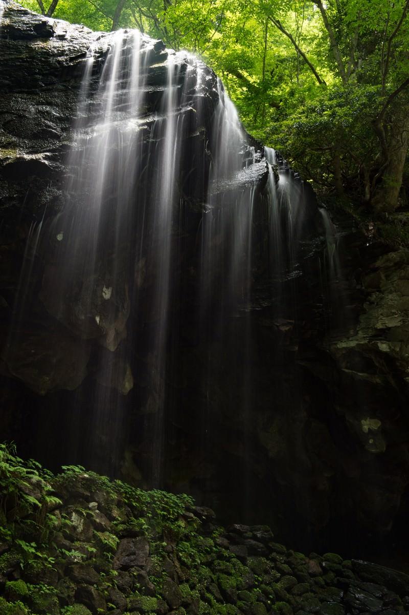 「裏見の滝とも呼ばれる岩井滝」の写真