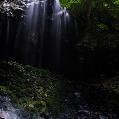 岩井滝と新緑(岡山県鏡野町6月)の写真