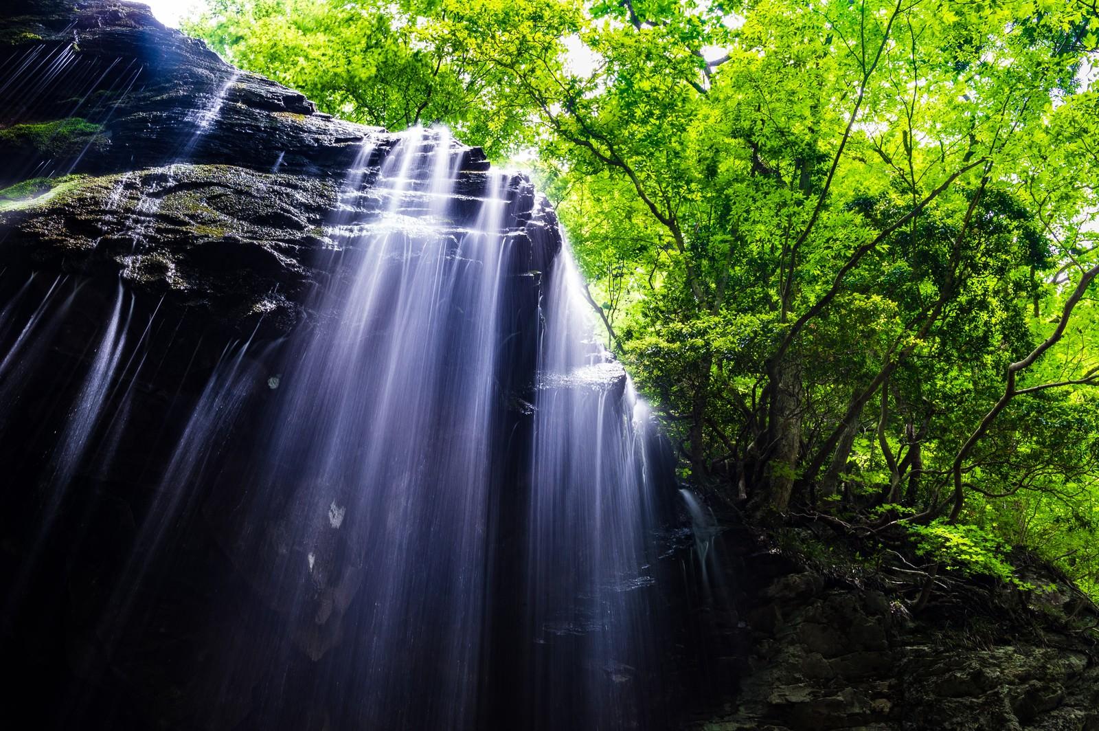 「鏡野町の岩井滝」の写真