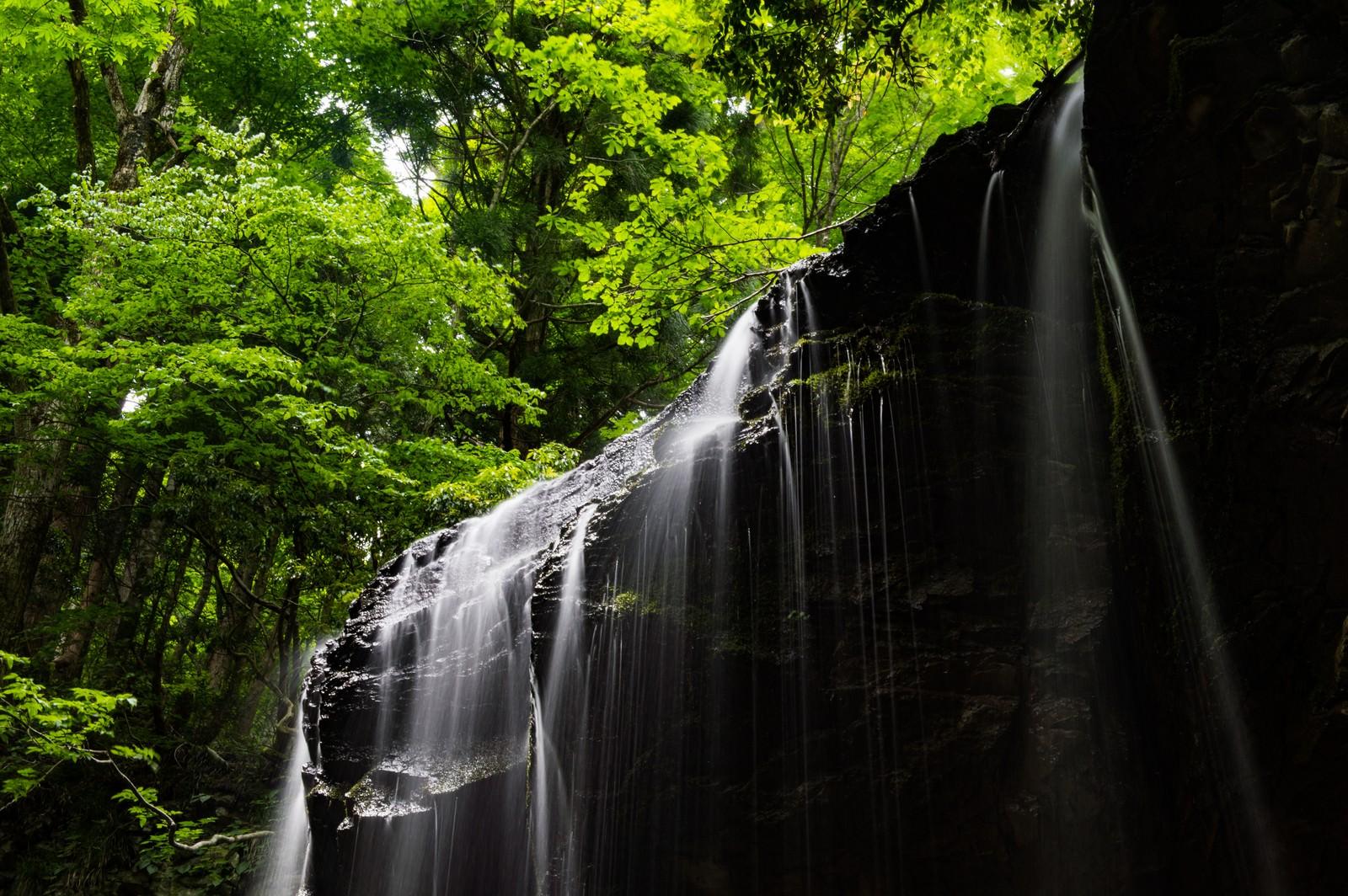 「初夏の新緑と岩井滝(岡山県鏡野町)」の写真