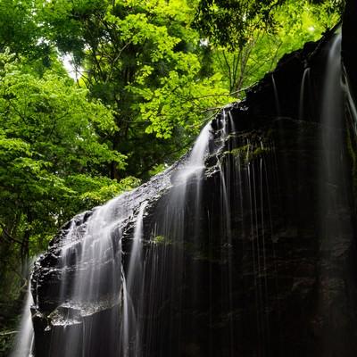 「初夏の新緑と岩井滝(岡山県鏡野町)」の写真素材