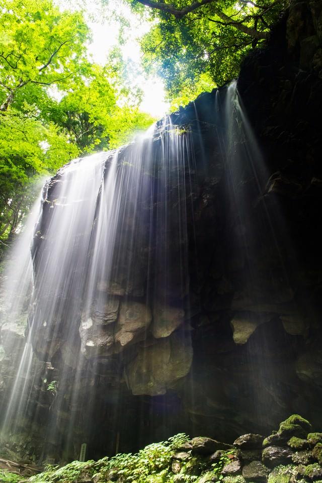 滝と緑と木漏れ日の写真
