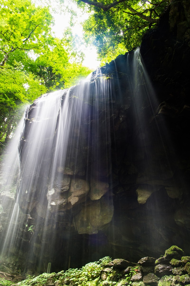 「滝と緑と木漏れ日滝と緑と木漏れ日」のフリー写真素材を拡大