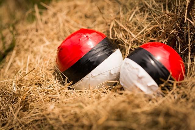 孵化を待つ紅白ボールの写真