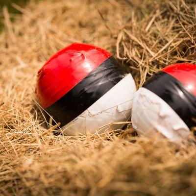 「孵化を待つ紅白ボール」の写真素材