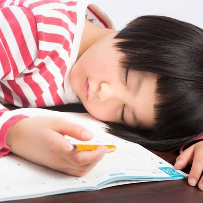 「宿題しながら爆睡する前髪パッツンの女の子」の写真素材