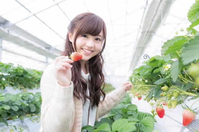 真っ赤ないちごを摘み嬉しそうに笑う彼女の写真