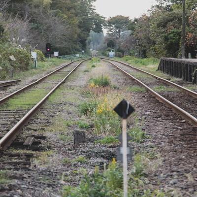 「いすみ鉄道の線路」の写真素材