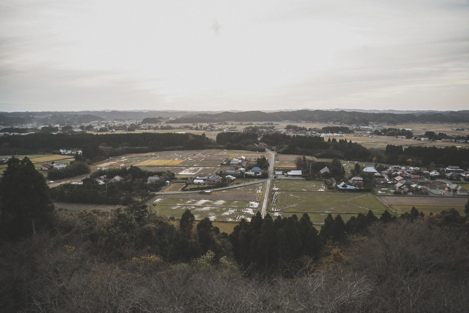 「高台から眺めるいすみ市の風景」の写真