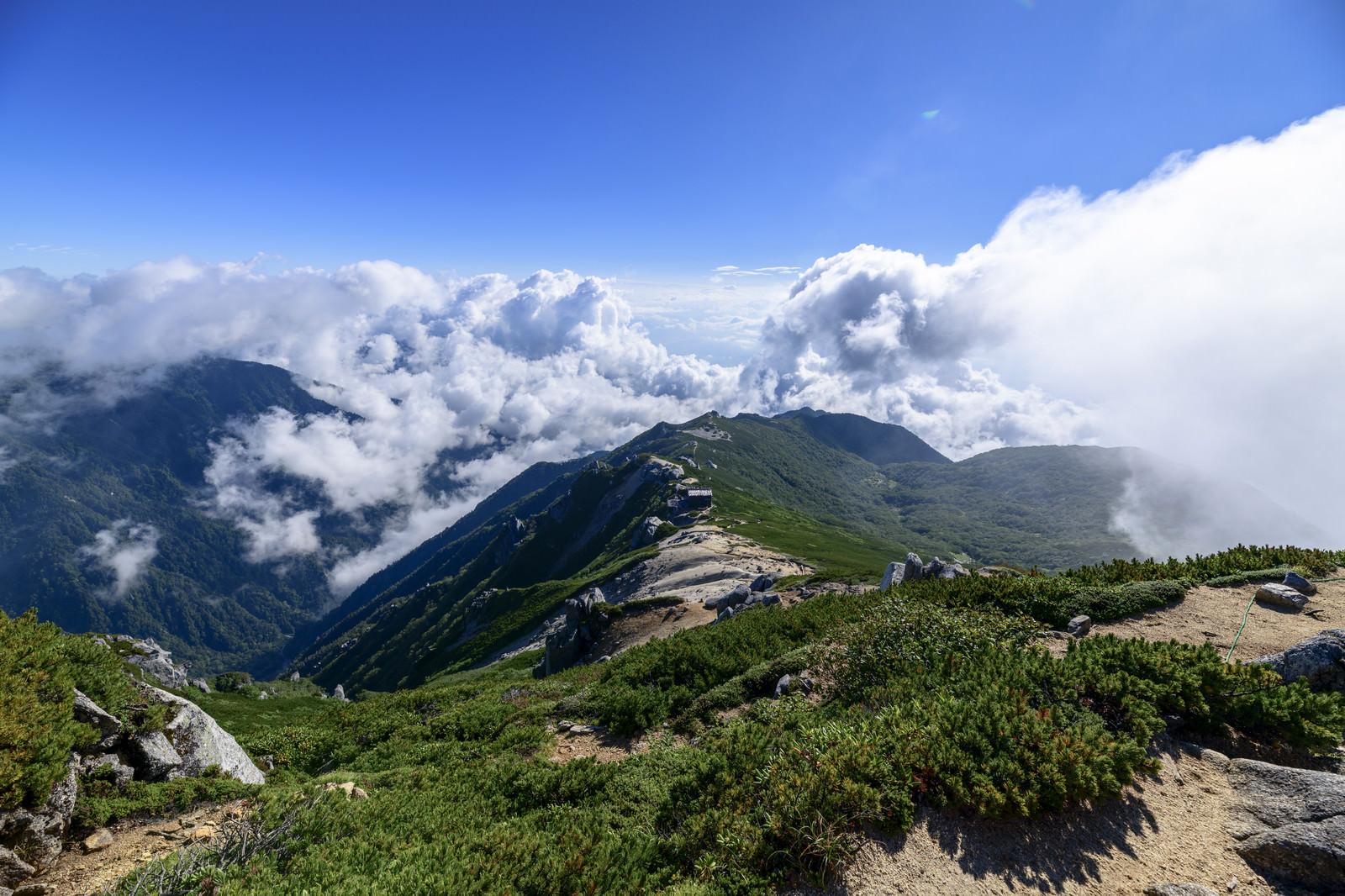 「真っ青な青空と駒峰ヒュッテへの稜線」の写真