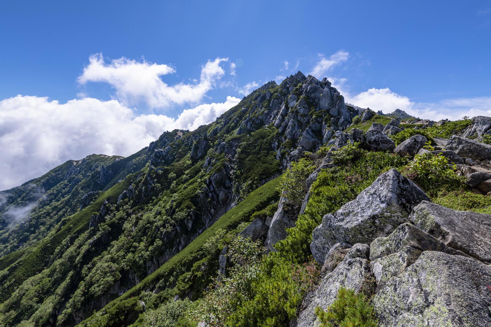 「花崗岩がそびえたつ中央アルプスの稜線」の写真