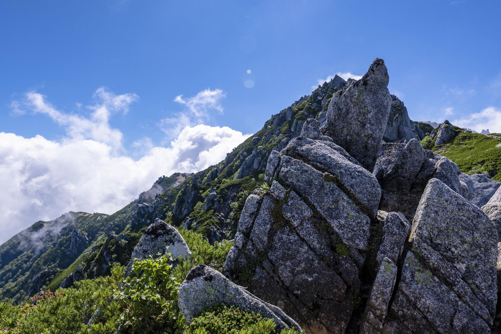 「花崗岩とハイマツが特徴的な中央アルプスの稜線の景色」の写真