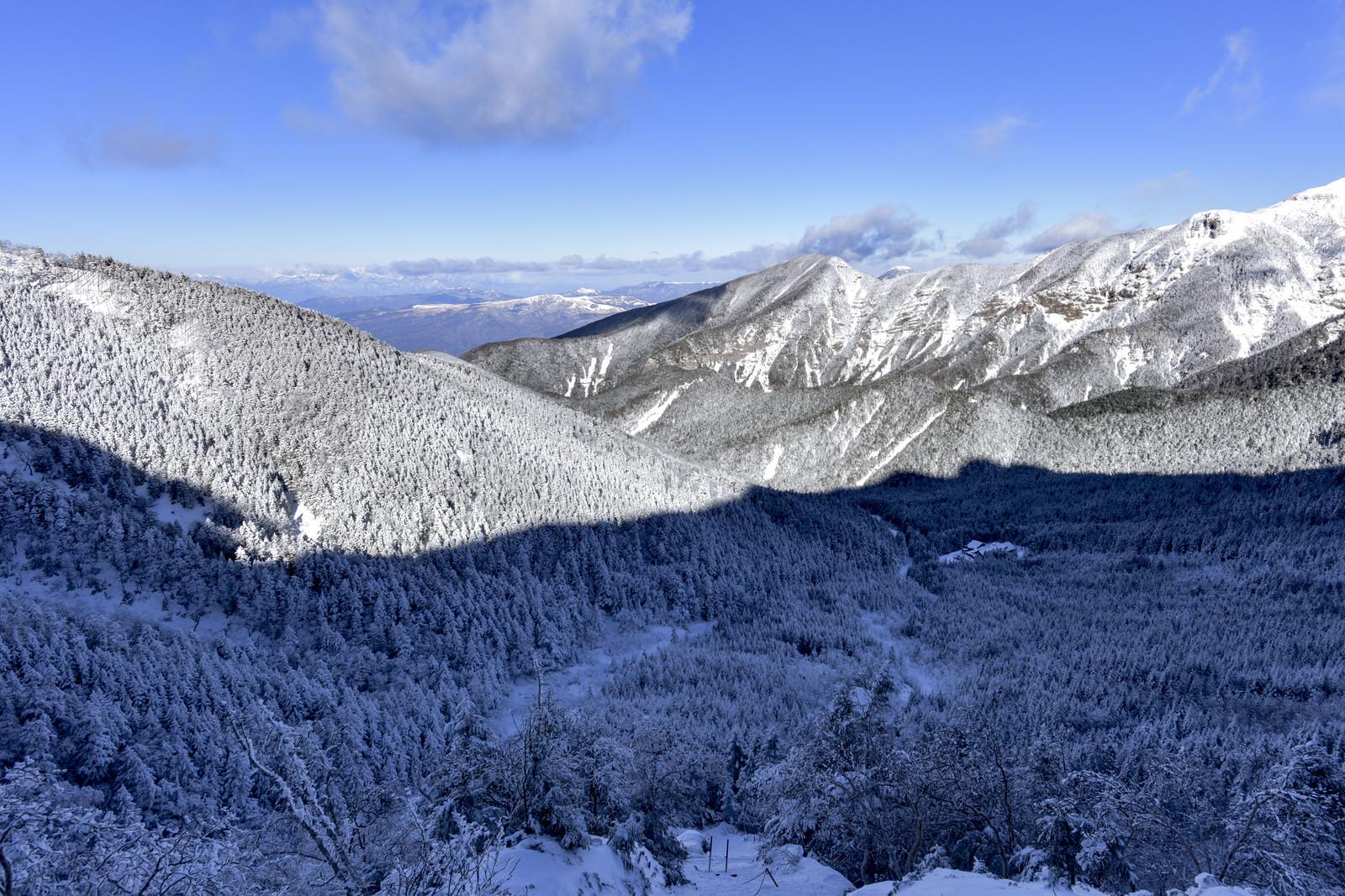 「赤岳の影が重なる八ヶ岳の雪の森」の写真